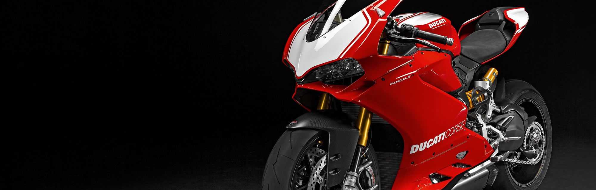 SUPERBIKE PANIGALE R / DNA RACING